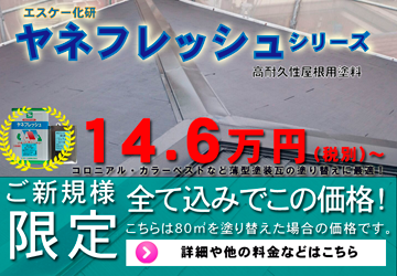 屋根塗装 ヤネフレッシュ 146,000円税別~